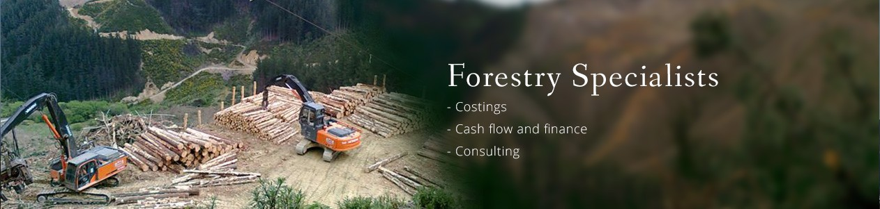 Forestry specialist. Blackburne Group.